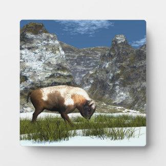 Plaque Photo Bison dans la montagne