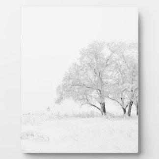 Plaque Photo Blanc de paysage d'hiver de Noël