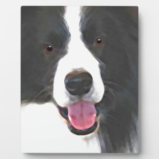 Plaque Photo border collie