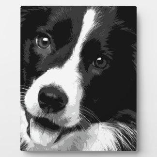 Plaque Photo Border collie noir et blanc