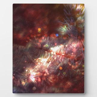 Plaque Photo Branches impeccables rougeoyantes