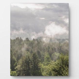 Plaque Photo Brouillard vert de montagnes