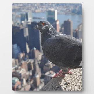Plaque Photo Ciel de New York City Manhattan Etats-Unis