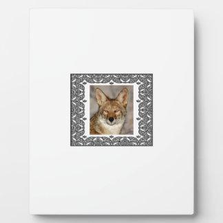 Plaque Photo coyote dans un cadre