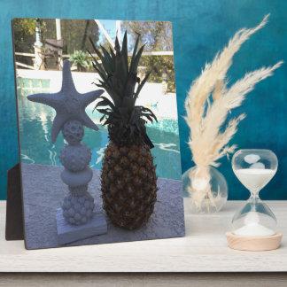 Plaque Photo Étoiles de mer d'ananas