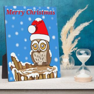 Plaque Photo Flocon de neige le hibou à Noël