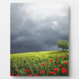 Plaque Photo Floral, art, conception, beau, nouvelle, mode,