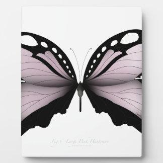Plaque Photo Grand chasseur rose de papillon rose