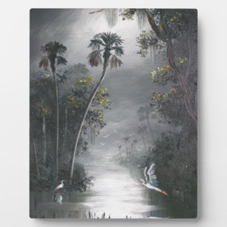 Plaque Photo Héron brumeux de rivière de la Floride