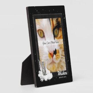 Plaque Photo L'argent commémoratif de chat tigré d'animal