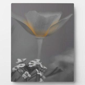 Plaque Photo Lit de Wiithin