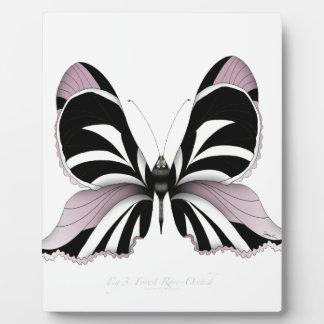 Plaque Photo Orchidée rose de forêt rose de papillon
