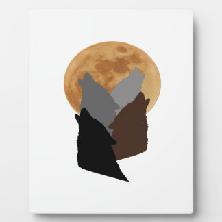 Plaque Photo Par la lumière de la lune