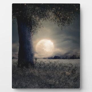 Plaque Photo Paysage de nuit