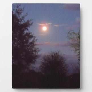 Plaque Photo pleine augmentation de lune de loup