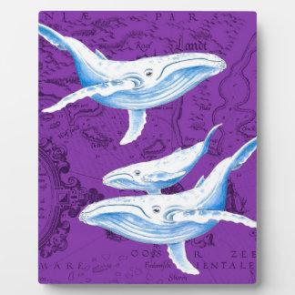 Plaque Photo Pourpre de famille de baleines bleues