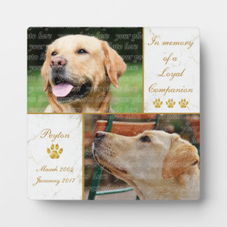 Plaque Photo Souvenir loyal d'animal familier de photo de chien