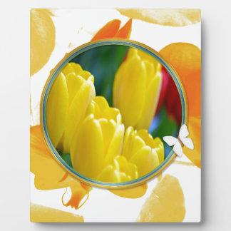 Plaque Photo Tulipes jaunes dans le cadre rond coloré