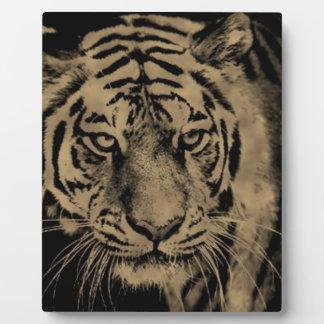 Plaque Photo Visage de tigre