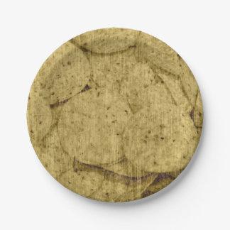 Plaques à papier de fiesta de tortilla assiettes en papier