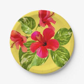 Plaques à papier de paradis tropical assiettes en papier
