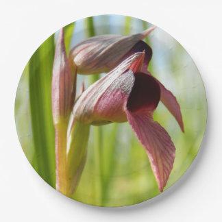 Plaques à papier d'orchidée de langue assiettes en papier