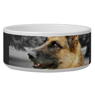 Plat d'aliments pour chiens de berger allemand gamelles pour chien