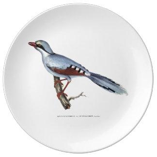 Plat de corneille de chasse assiette en porcelaine