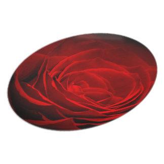 Plat de mélamine de rose rouge de Brillant Assiettes Pour Soirée