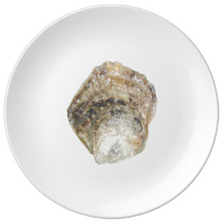 Plat de porcelaine d'huître - conception B Assiette En Porcelaine