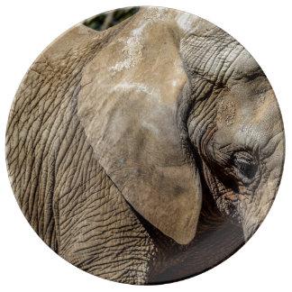 Plat d'éléphant assiette en porcelaine