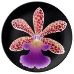 Plat pourpre de porcelaine de fleur d'orchidée d'O