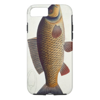 Plat XVI de carpe (Cyprinus Carpio) de Coque iPhone 7