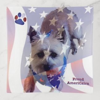 Plateau de bibelot de carré de drapeau de Terrier