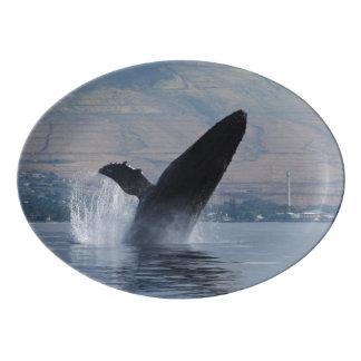 Plateau De Service En Porcelaine violation de baleine de bosse