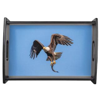 Plateau Eagle chauve avec un poisson
