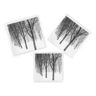 Plateau En Acrylique comme je dégrossis avec des arbres