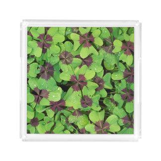 Plateau En Acrylique Correction de trèfle de quatre feuilles (oseille)