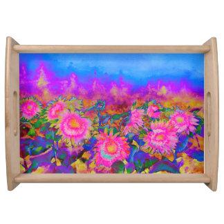Plateau Gisements de tournesol - rose