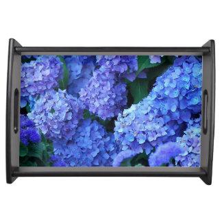 Plateau Hortensias bleus floraux