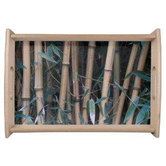 Plateau Photo en bambou de forêt