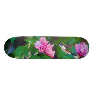 Plateaux De Skateboards Customisés Planche à roulettes Throated rouge de colibri
