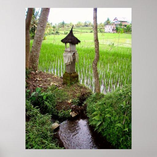 """Plein (18"""" x 24"""") temple Bali de gisement de riz d Poster"""