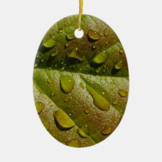 Pluie sur une feuille de magnolia ornement ovale en céramique