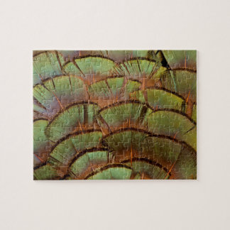 Plume de faisan éventée par vert puzzle