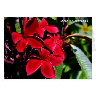 Plumeria de Mele Kalikimaka Carte De Vœux