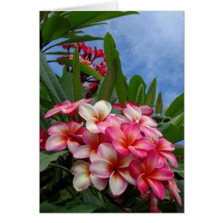 Plumeria hawaïen carte de vœux