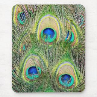 Plumes bleues indiennes de paon tapis de souris