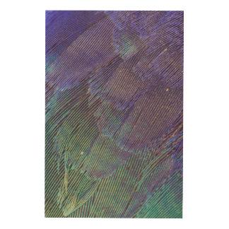 Plumes de rouleau de Lilas-breasted Impression Sur Bois