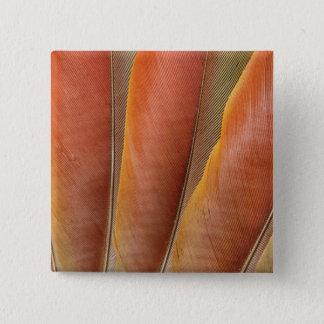 Plumes Rouge-Oranges d'ara d'écarlate Pin's